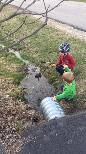 Two Boys and a Puddle